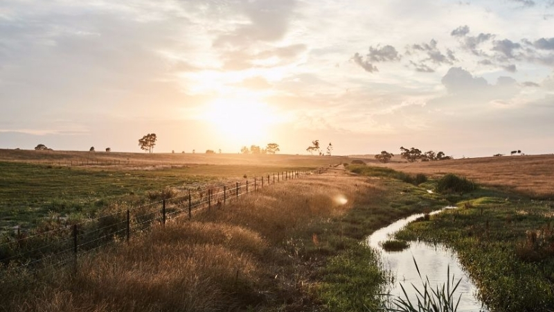 ▲ Stockland's nearby Edgewood development Clyde Creek running through a grassy paddock.