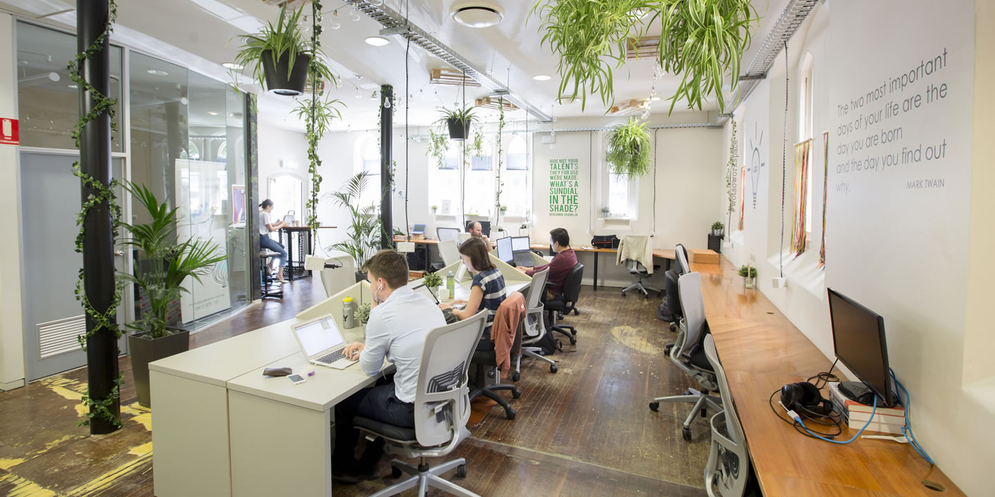 Adelaide has one of the highest concentrations of coworking spaces in Australia. Photo from WOTSO Workspace Adelaide.