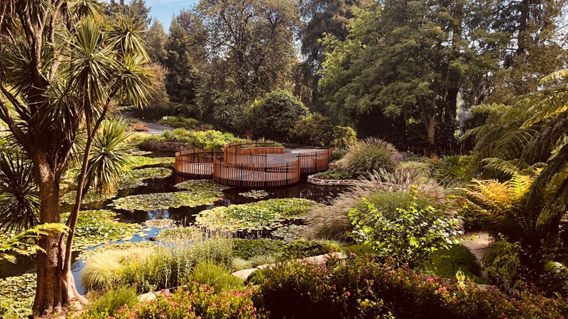 The Lily Pads | Inspiring Place (TAS)