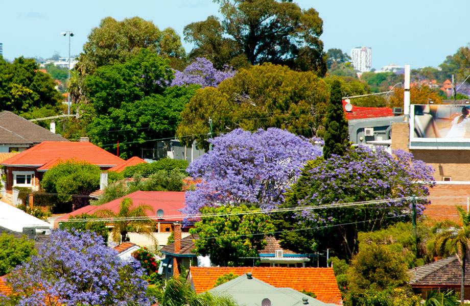 Brisbane house rents grew by 2.5 per cent and 1.3 per cent for units.